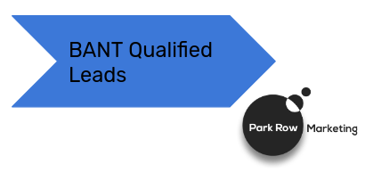 Results focused BANT Qualified Lead Generation